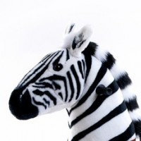 PonyCycle Zebra (XXL formaat)