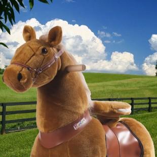 Ponycycle Champagekleurige (Groot formaat)