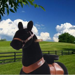 Ponycycle zwart met Geluid (Klein formaat)