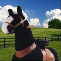 Ponycycle zwart met witte bles (Groot formaat)